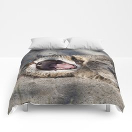 CAT - YAWNING - PHOTOGRAPHY - ANIMALS - CATS Comforters