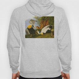 Eider Duck John James Audubon Scientific Illustration Birds Of America Drawings Hoody