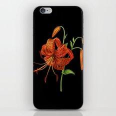 Lilium Tigrinum iPhone & iPod Skin