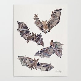 Bat Collection Poster