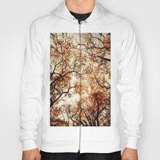 Woodland Trees Hoody