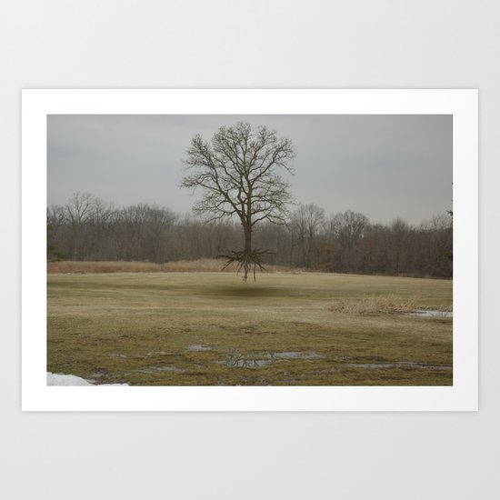 lingering just above the ground Art Print