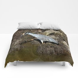 Yellow Crowned Night Heron Comforters