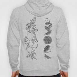 Citrus Branch of Lemons and Slices of Fruit Hoody