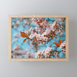 Cherry Cherry Spring Love Framed Mini Art Print