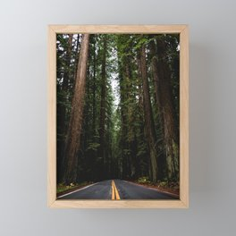 The Road to Wisdom - Nature Photography Framed Mini Art Print