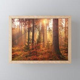 Autumn Landscape Forest Photograph Framed Mini Art Print
