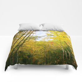 Fall Colors Comforters