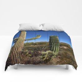 In The Sonoran Desert Comforters