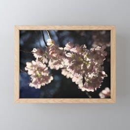 Cherry's fest Framed Mini Art Print