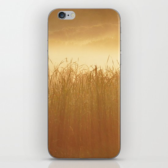 Field Grass in the Mist  2 iPhone & iPod Skin