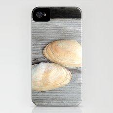 Two Deer Isle Shells iPhone (4, 4s) Slim Case