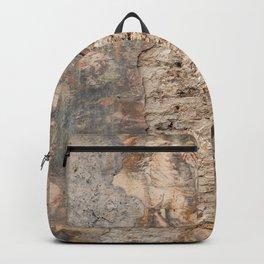 Renaissance Wall Backpack