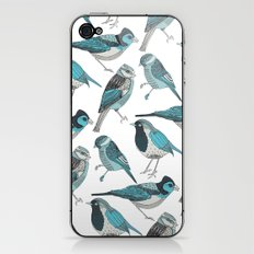 pale green birds iPhone & iPod Skin