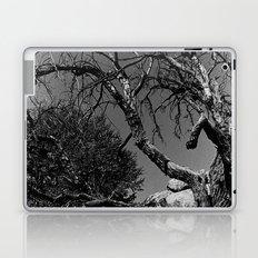 Desolance Laptop & iPad Skin