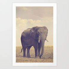 The Biggest Elephant in Botswana Art Print