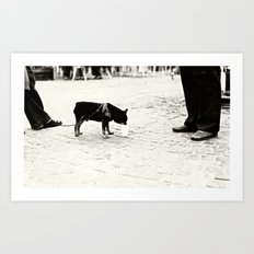 Dog on the street Art Print