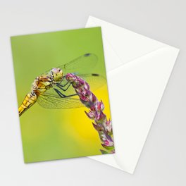 "Yellow dragonfly ""Sympetrum striolatum"" Stationery Cards"