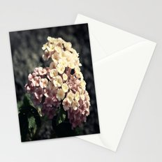A Simple Gift Stationery Cards
