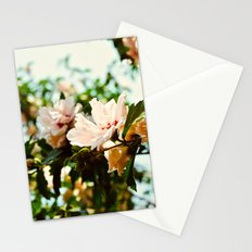 Light and Delicate Stationery Cards