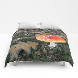 Fly Agaric Comforters