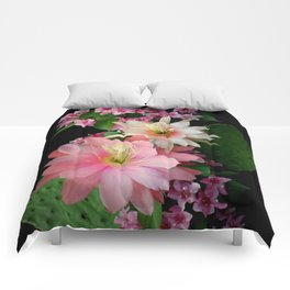 Cacti, Pink And Paler Comforters