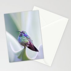 Hummingbird on Aloe Stationery Cards