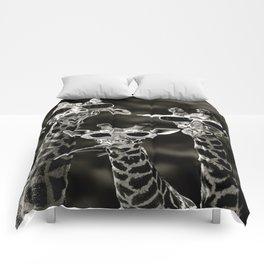 family Comforters
