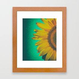 Sunflower vintage Framed Art Print