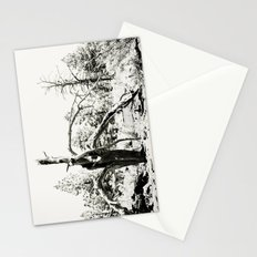 Volcanic Aftermath Stationery Cards