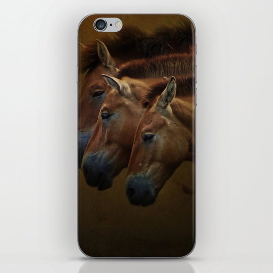 Three Amigos iPhone & iPod Skin