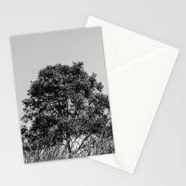 Lonely tree in black and white Stationery Cards