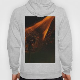 Light Your Wishes on Fire Hoody