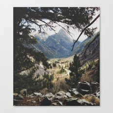 San Juan Forest Canvas Print