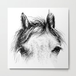 Horse animal head eyes ink drawing illustration. Mammal face portrait Metal Print