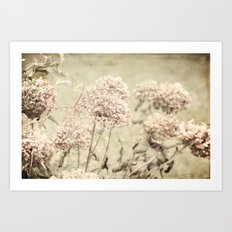 Antique Hydrangeas -- Dreamy Pastel Autumn Botanical Art Print