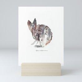 Lepus Californicus Mini Art Print