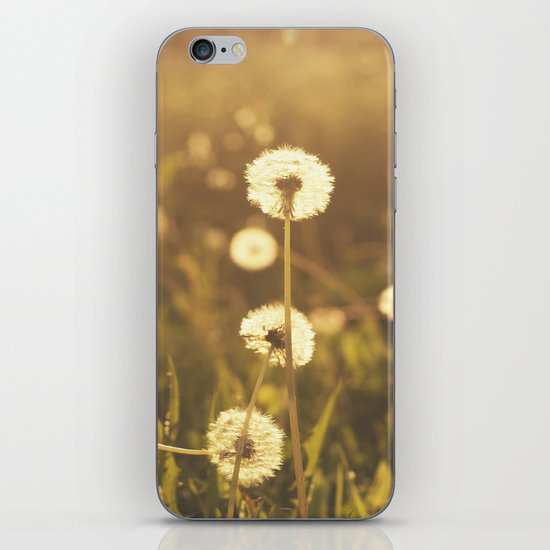 A Field of Wishes iPhone & iPod Skin