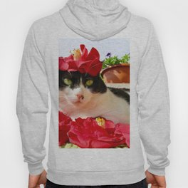 Khoshek charming kitty Hoody