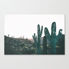 Day Six Canvas Print