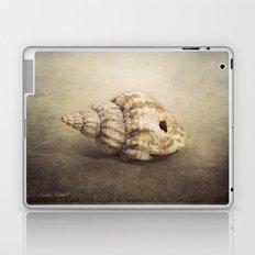 The Sea Shell Laptop & iPad Skin