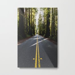 Redwoods Road Trip - Nature Photography Metal Print