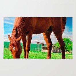 horse eating grass Rug