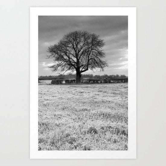 Oak Tree Silhouette Art Print