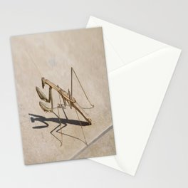 Praying Mantis and Shadow Stationery Cards