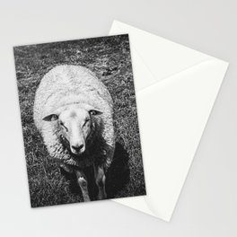 Curious sheep | Black & White | Nature Photography | Fine Art Photo Print Stationery Cards