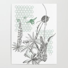 Lupins and leeks Poster