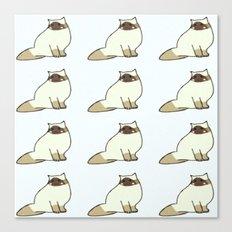 cats-55 Canvas Print