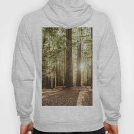 Redwood forest Hoody