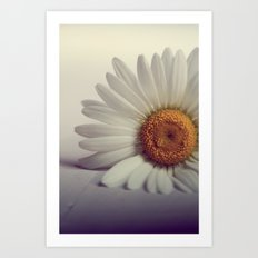 Daisy Flower Art Print